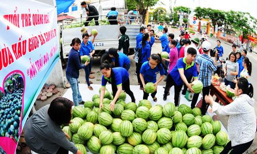 Tọa đàm trực tuyến về tiêu thụ - xuất khẩu nông sản