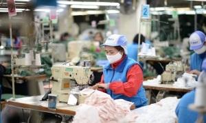 Goldman Sachs: GDP Việt Nam có thể đạt 8,1% năm 2021