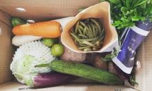 Doanh nghiệp tặng rau củ quả cho nhân viên mùa dịch